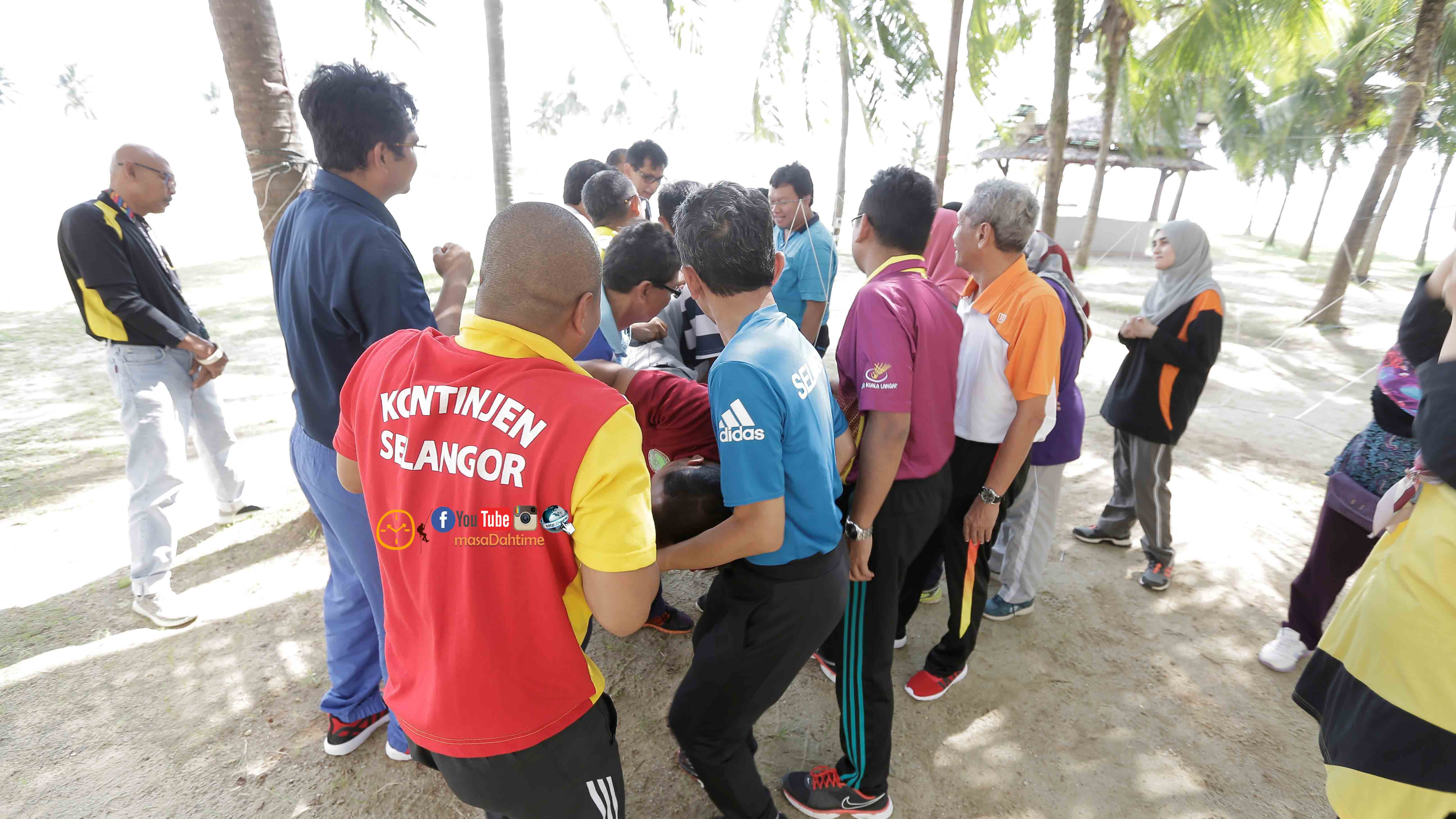 Teamwork Semut